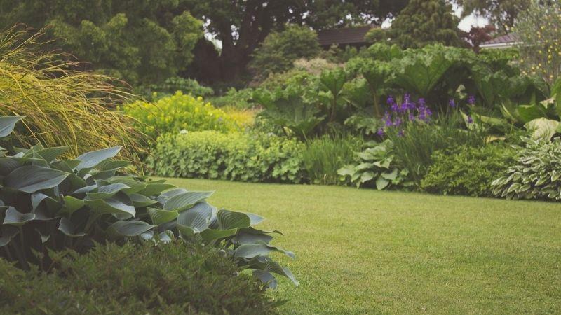 Ile kosztuje budowa ogrodu?