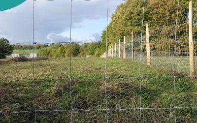#18. Jak przygotować teren działki do założenia ogrodu?
