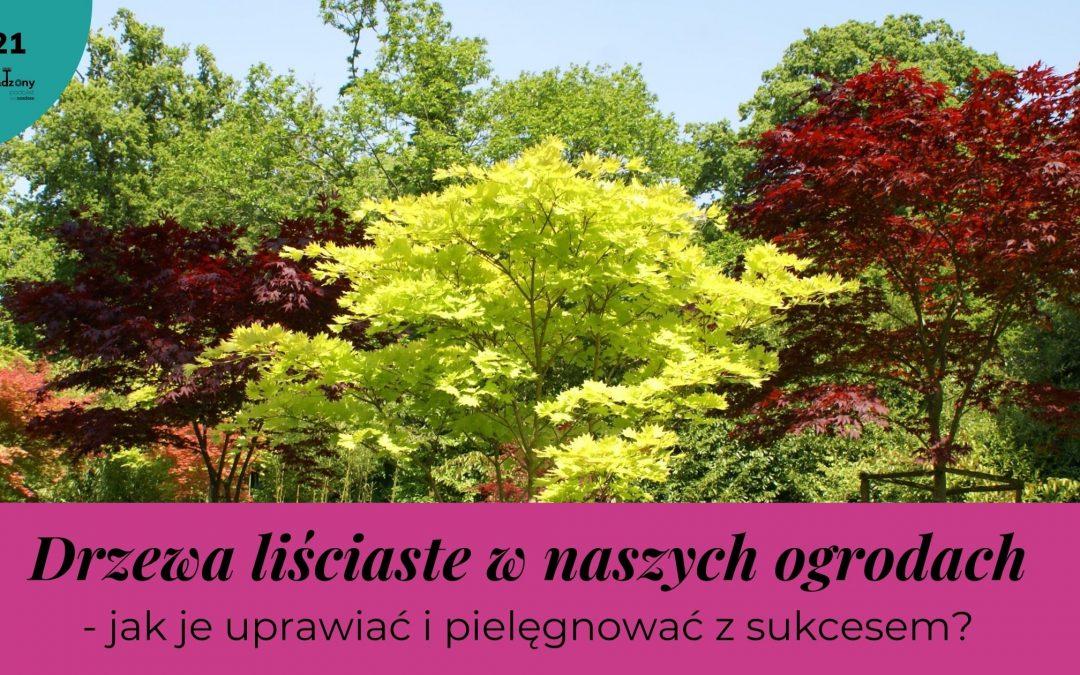 #21. Drzewa liściaste- jak wykorzystać największe rośliny w swoim ogrodzie?